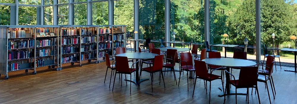 bibliothek inventar manager